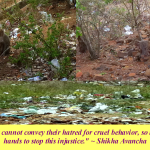 Picture taken during India visit by Shikha Avancha: Monkeys living in polluted environments and roadside trash
