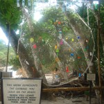 Picture taken by Pavan Raj Gowda, at Manuel Antonio Beach, Costa Rica Plastic Waste - by, Pavan Raj Gowda